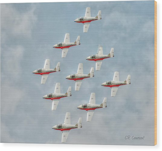 Flock Of Snowbirds Wood Print