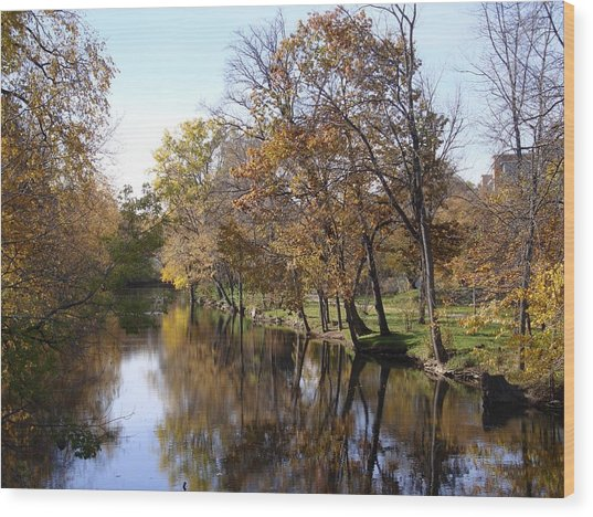 Flood Plain Wood Print
