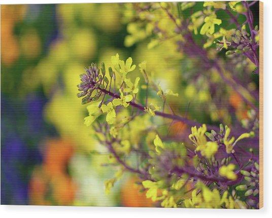 Flora Flora Flora Wood Print