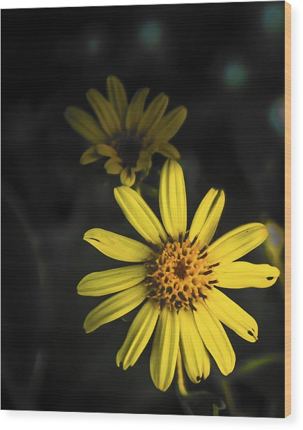 Flora In Yellow Wood Print