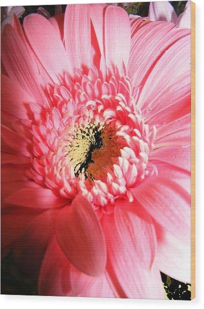 Floral 41 Wood Print by Chuck Landskroner