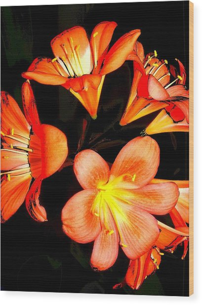 Floral 6019 Wood Print by Chuck Landskroner