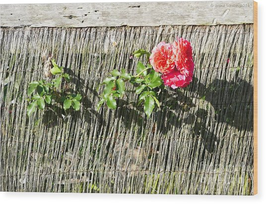 Floral Escape Wood Print