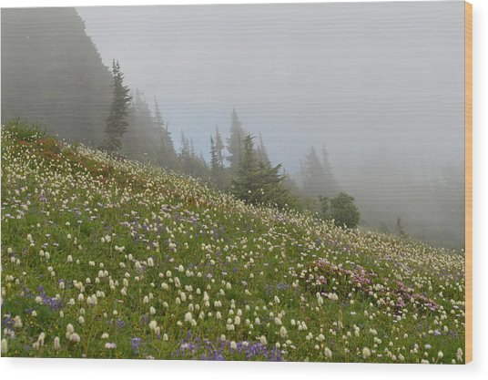 Floral Meadow Wood Print