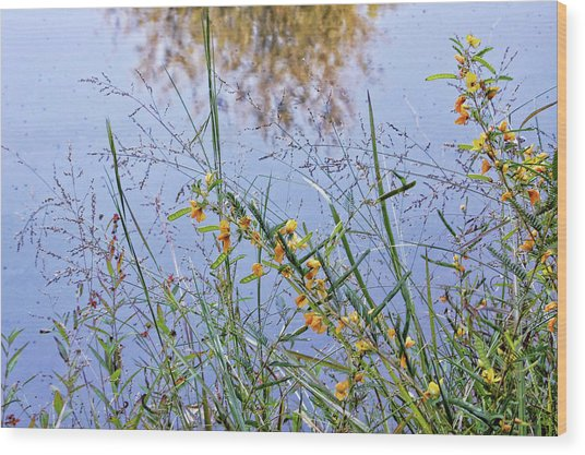 Floral Pond  Wood Print