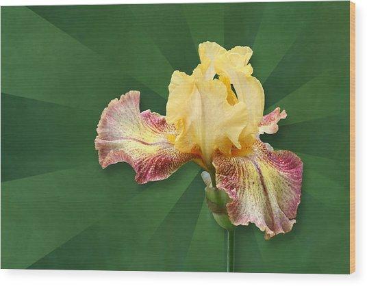 Floral Radiance Wood Print