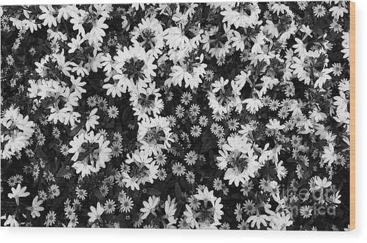 Floral Texture In Black And White Wood Print