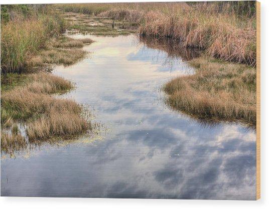 Flordia Wetlands Wood Print by JC Findley