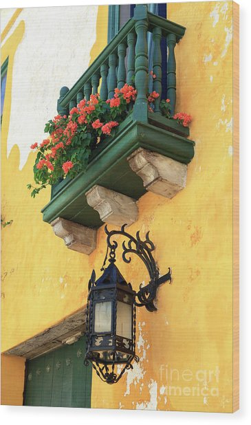 Flores Rojas En Cartagena Wood Print by John Rizzuto
