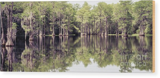 Florida Beauty 10 - Tallahassee Florida Wood Print