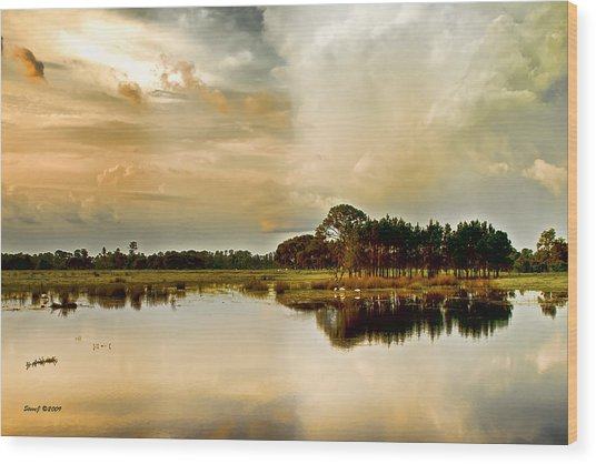 Florida Bird Pond Wood Print