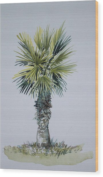 Florida Palm Botanical Wood Print