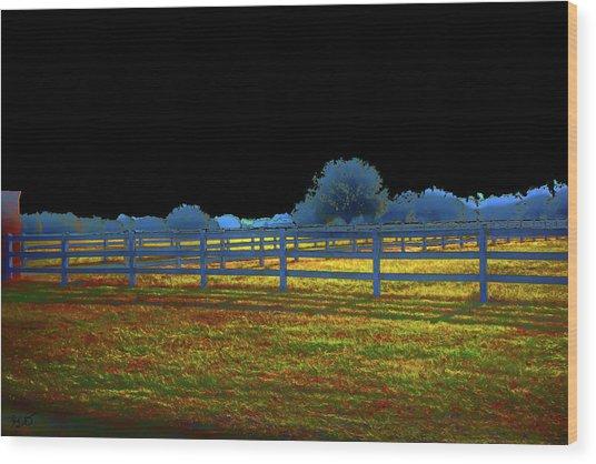 Florida Ranchland Wood Print