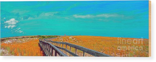 Florida Sand Dunes Atlantic New Smyrna Beach Wood Print