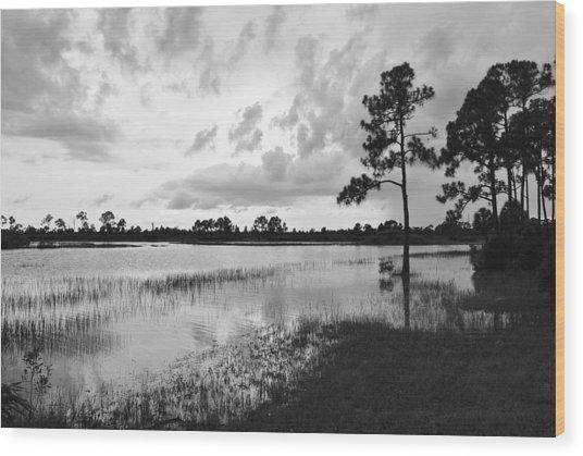 Florida Scene Wood Print by Steven Scott