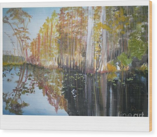 Florida Swamp Wood Print by Hal Newhouser