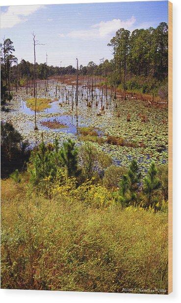 Florida Wetland Wood Print by Nicole I Hamilton