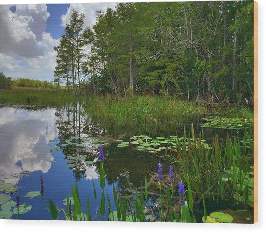 Florida Wetlands Reflections Wood Print