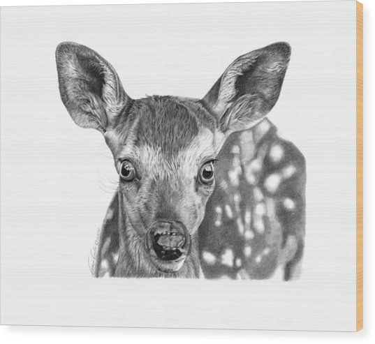 Florry The Fawn Wood Print