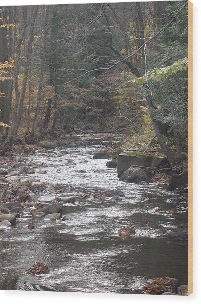 Flow Wood Print by Scott Harrington