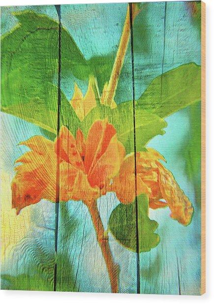 Flower Cup, Hibiscus Wood Print