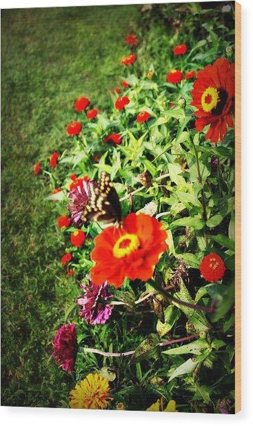 Flower Dance Wood Print by Jill Tennison