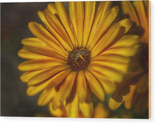 The Flower Inspector Wood Print