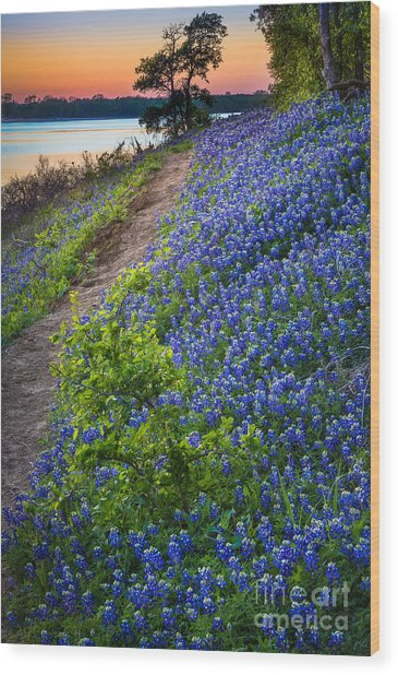 Flower Mound Wood Print