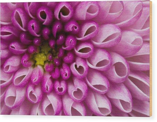 Flower No. 4 Wood Print