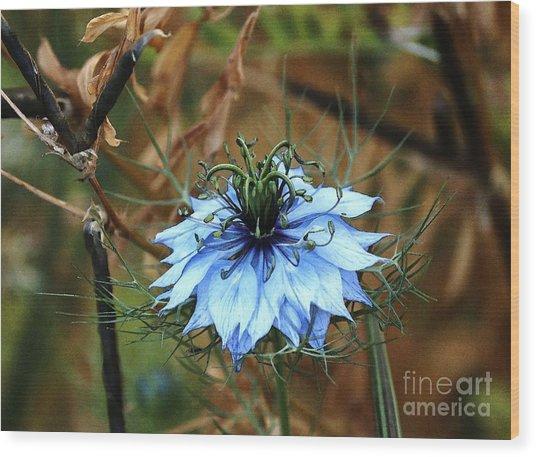 Flower Or Weed Wood Print
