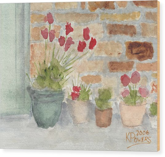Flower Pots Wood Print