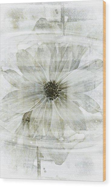 Flower Reflection Wood Print by Frank Tschakert