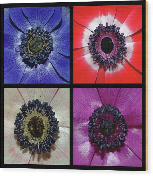Flower Square Montage - Anemone Wood Print