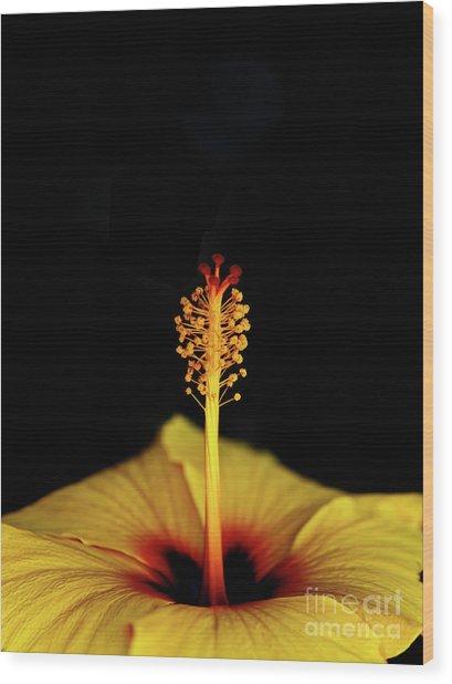 Flower_06 Wood Print