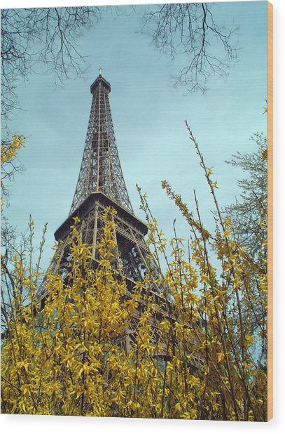 Flowered Eiffel Tower Wood Print by Charles  Ridgway