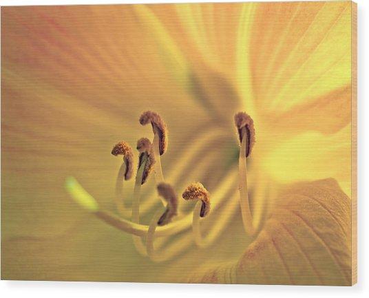 Flowerheart Wood Print