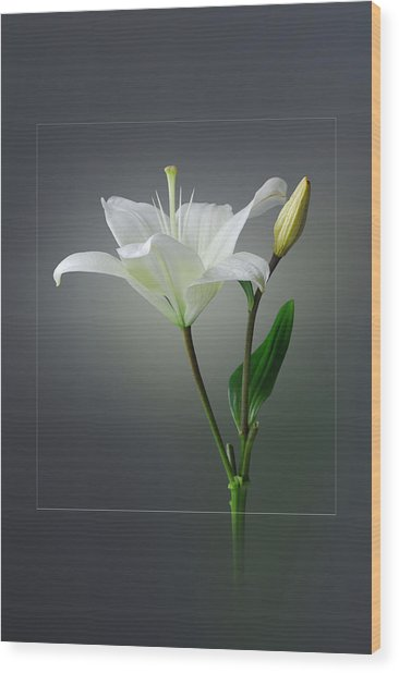 Flower..one Wood Print by Deepak Pawar