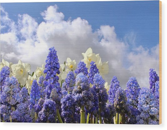 Flowers And Sky Wood Print