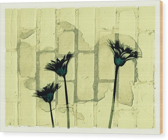Flowers And The Brick Wall Wood Print by Susan Stone