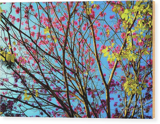 Flowers And Trees Wood Print