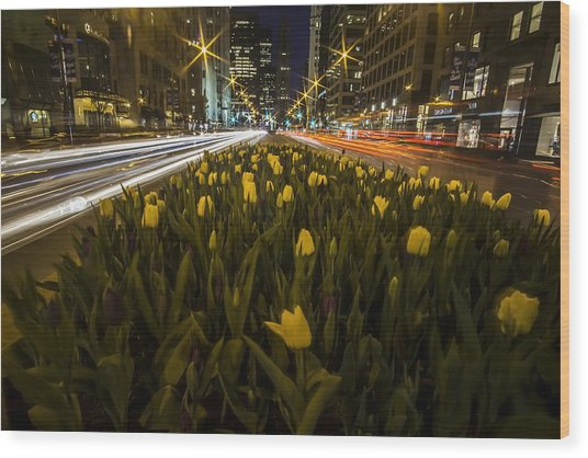 Flowers At Night On Chicago's Mag Mile Wood Print