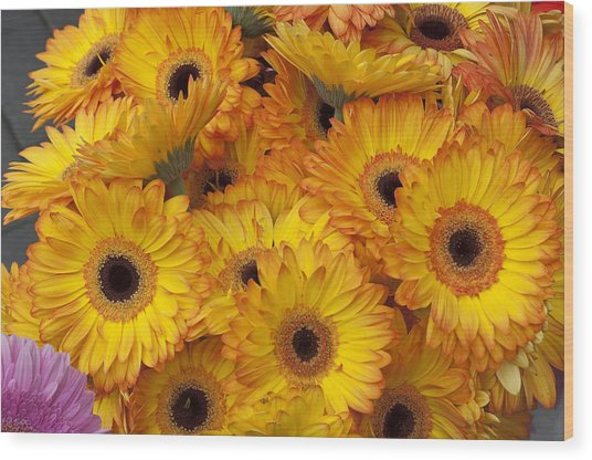 Flowers Bo71 Wood Print by Charles  Ridgway