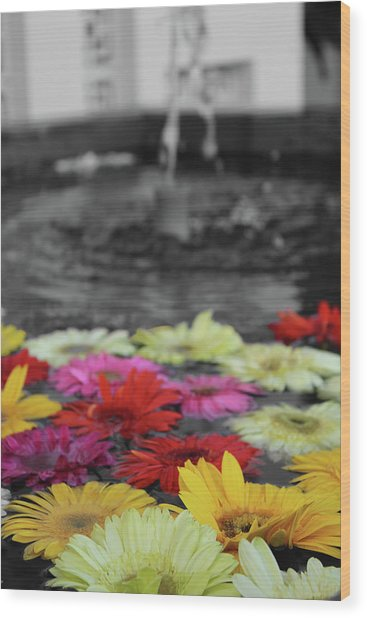 Flowers In Fountain Wood Print