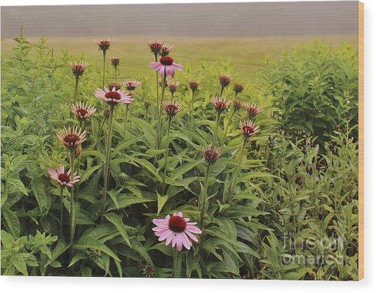 Flowers In The Fog Wood Print