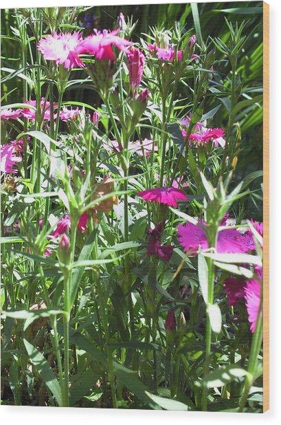 Flowers In The Garden Vii Wood Print by Daniel Henning