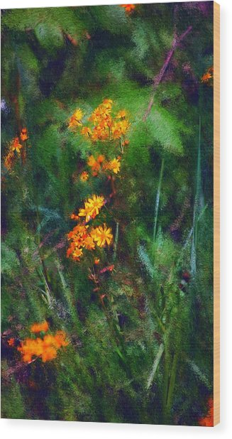Flowers In The Woods At The Haciendia Wood Print