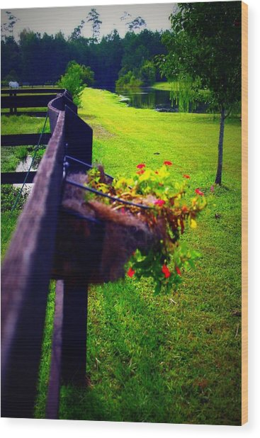 Flowers On A Fence Wood Print by Jill Tennison