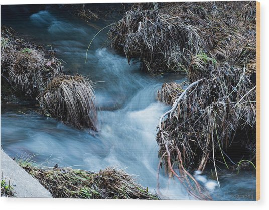 Flowing Creek Wood Print