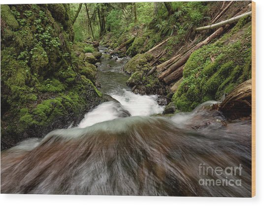 Flowing Downstream Waterfall Art By Kaylyn Franks Wood Print