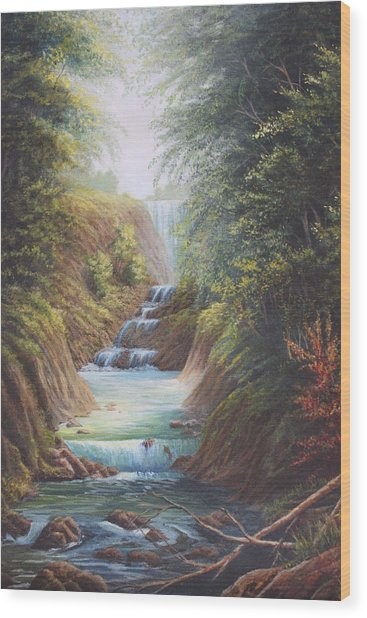Flowing River Wood Print by Diana Miller
